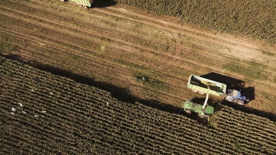 aerial shot of crop